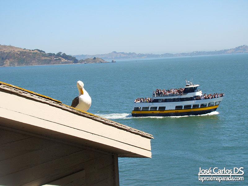 Bahía de San Francisco desde Alcatraz