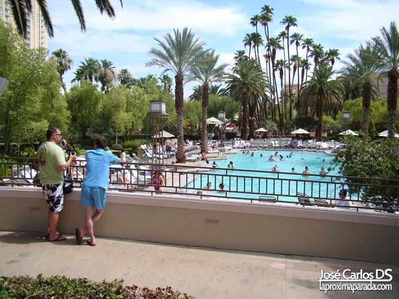 Piscina Hotel MGM Las Vegas