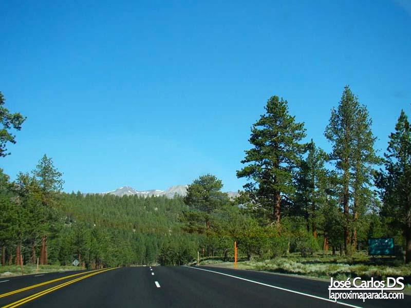 Rumbo a Yosemite