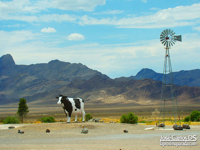 Vaca Amargosa Valley, NV