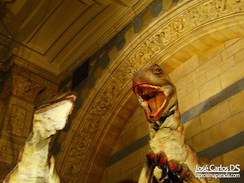 Velociraptores Museo Historia Londres
