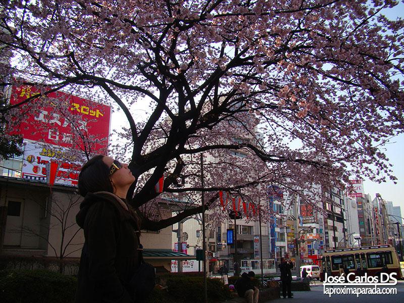 Parque de Ueno en Tokyo