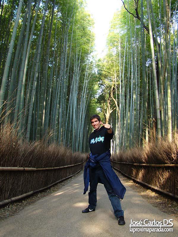 Bosque de Bambués en Kyoto