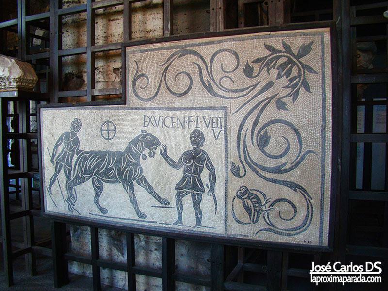 Restos Antiguos Coliseo Romano