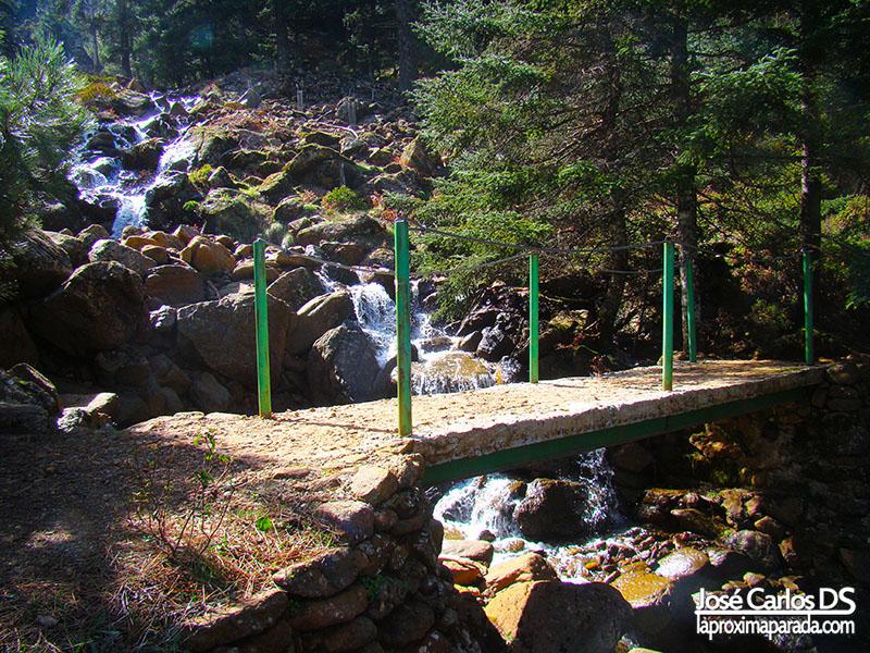 Puente Paseo de los Pinsapos a Realillos