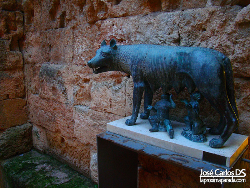 Loba en Museo de Historia de Tarragona #TBMCatSur