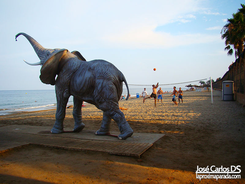 Elefante Playa Marina d´Or Oropesa Castellón