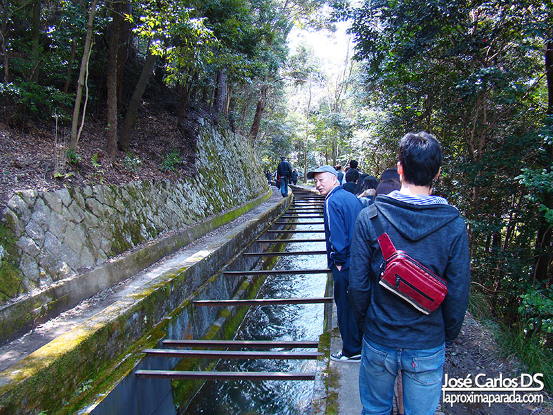 Camino de la Filosofía Kyoto