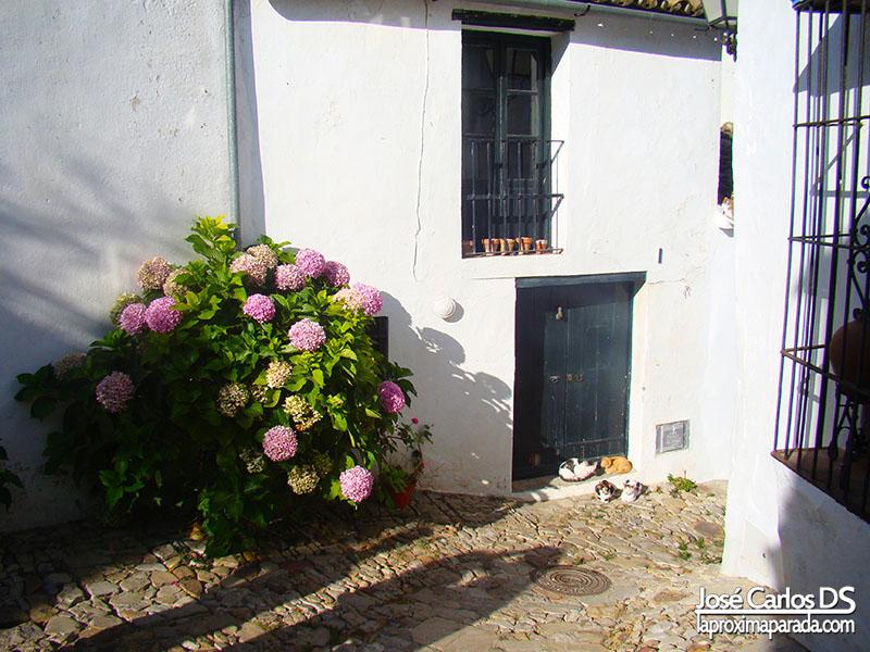 Calles Típicas Castellar Viejo