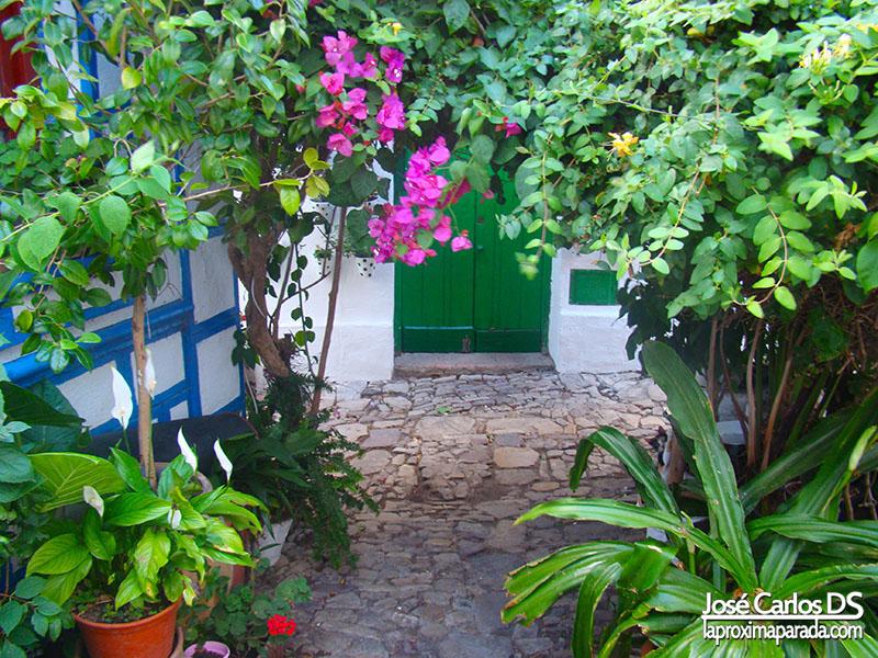 Flores en Calles Típicas Castellar de la Frontera