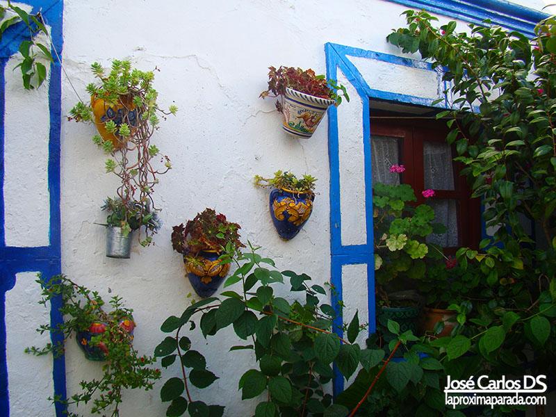 Macetas en Calles Típicas Castellar de la Frontera