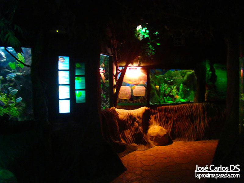 Sea Life Aquarium Benalmádena