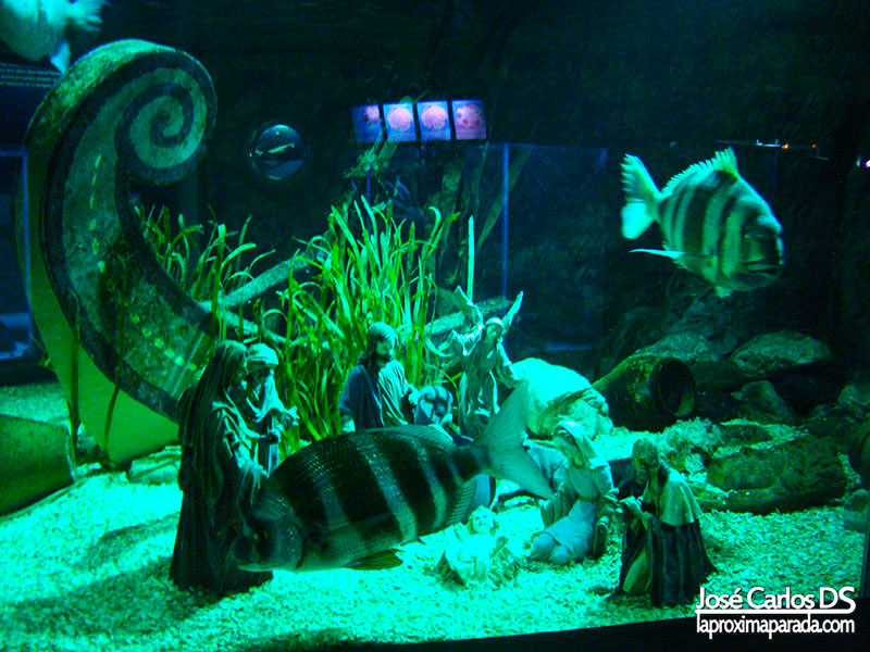 Sea Life Word Belén Marino