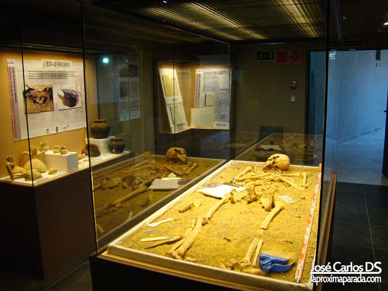 Museo Arqueológico Romano Medina Sidonia
