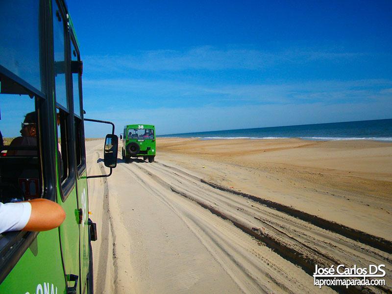 Dunas de Doñana, Huelva