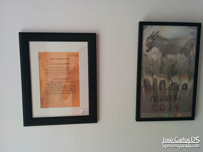 Año Platero Moguer 2014 Huelva