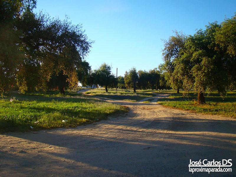 Olivares Bollullos Par del Condado Huelva