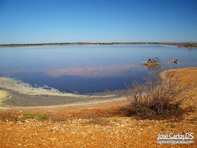 Salinas Parque Natural Odiel Huelva