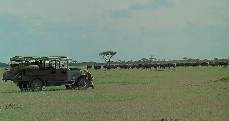 Safari en Kenia Memorias de África