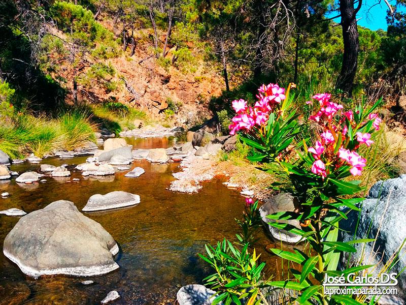 Descenso Río Padrón de Estepona