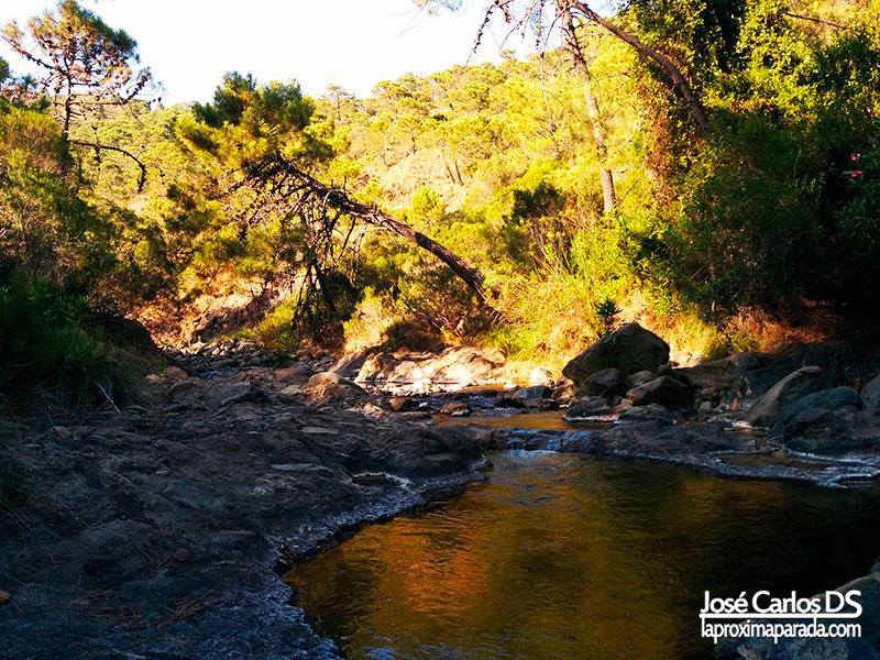 Charcas Río Padrón en Estepona