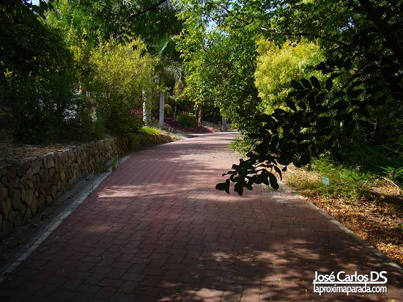 Caminos Jardín Botánico de Málaga