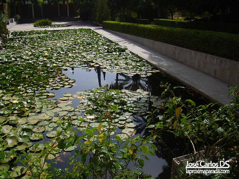 Visitar jard n bot nico la concepci n la pr xima parada for Jardin botanico en sevilla