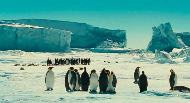 Población Pingüinos La Marche de l'empereur