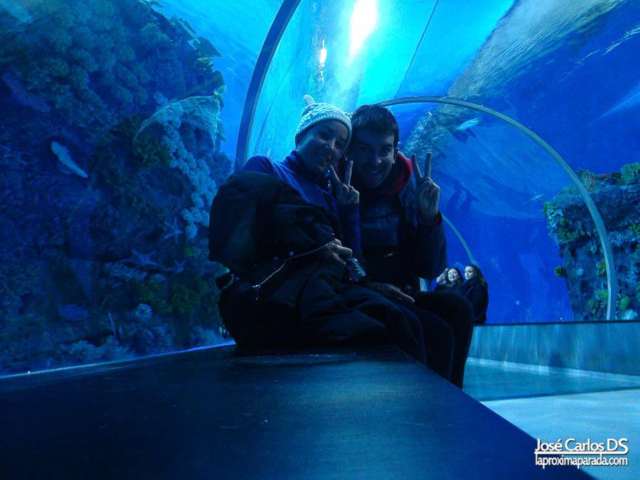 Túnel cristal Blue Planet de Copenhague